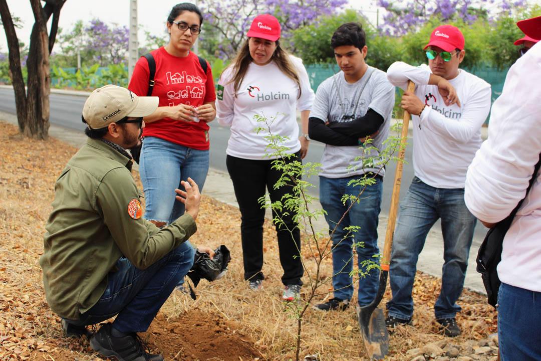 greenleader de fundacion la iguana