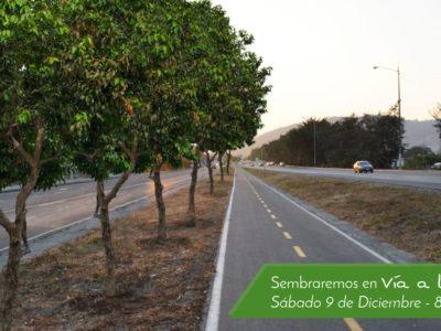 siembra via a la costa fundacion la iguana