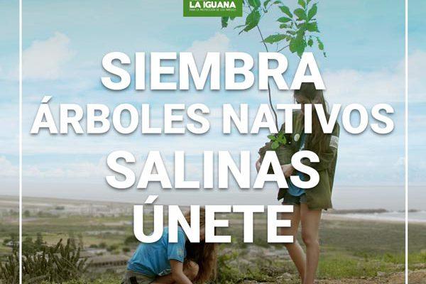 Siembra Salinas unete